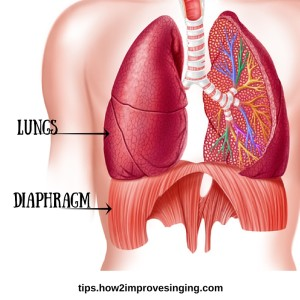 How to Sing from Your Diaphragm?
