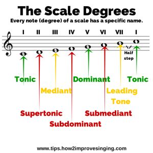 scale degrees