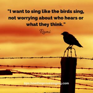23-Rumi