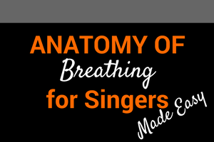 anatomy of breathing for singers made easy blog post